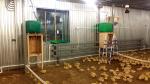 Прочее: оборудование для сельского хозяйства