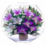 Стабилизированные растения и цветы
