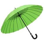 Галантерея, зонты, трости