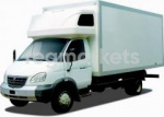 Фургоны и легкие развозные грузовики