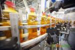 Оборудование для производства растительного масла