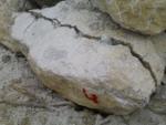 Разрушители бетона