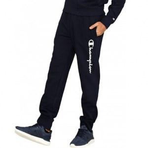 4580abd0 Спортивные брюки Champion в Краснодаре - 1460 товаров: Выгодные цены.