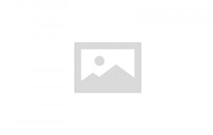 Пружина подвески LADA NIVA 2123 02- задняя RA6479