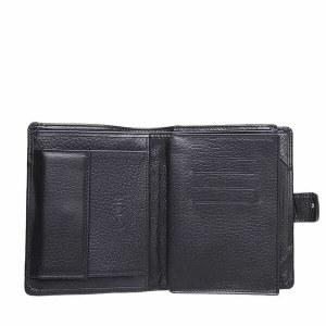eed141f17d3c Мужское портмоне с автодокументами и паспортом ТППА20-1